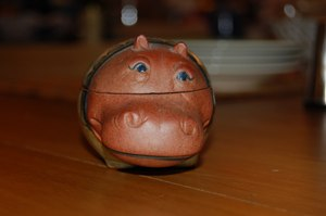 2008-02-hippo.jpg